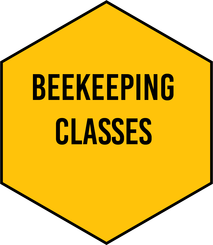 Beekeeping Class Picture
